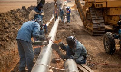 Chevron, consortium de Total et Qatar Petroleum remportent les offres pétrolières du Suriname