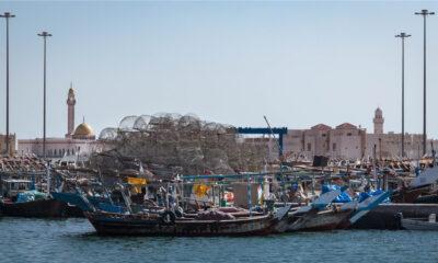 Le « plus grand » projet d'expansion des ports de pêche du Qatar sera bientôt achevé